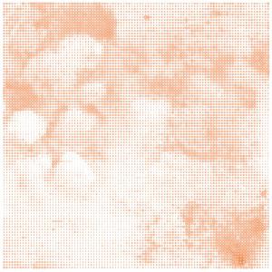 Orange Cloud_s